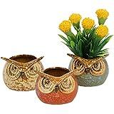 Tayhaa Multicolor Owl Design Ceramic Pot - Set of 3