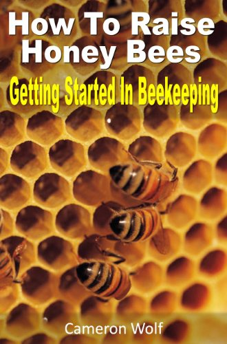 How To Raise Honey Bees: Getting Started In Beekeeping
