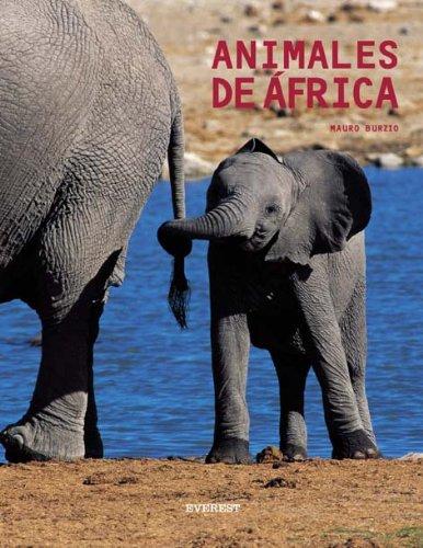 Animales de África (Manuales (everest)) por Burzio  Mauro