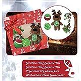 Croci Gift Kit Dog Toys Christmas Dog Surprise Box