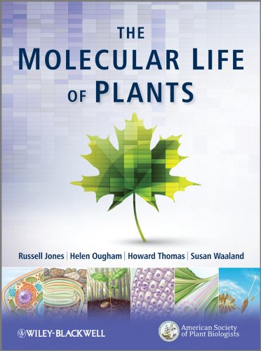 The Molecular Life of Plants por Russell L. Jones