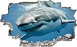 DesFoli Hai Shark 3D Look Wandtattoo 70 x 115 cm Wanddurchbruch Wandbild Sticker Aufkleber C177