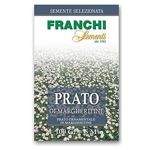 FRANCHI SEMENTI Graine de marguerites gazon de pelouse gr 100 Graines de pelouse