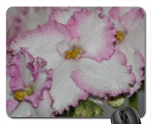 violeta-africana-mouse-pad-mousepad-flowers-mouse-pad-by-diseno-de-helado