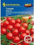 Tomaten Cherrytomaten Primavera