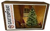 20m 200 LED Kerzen-Lichterkette für Weihnachtsbaum mit Programmen außen