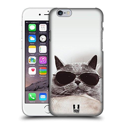Head Case Designs Chaton Avec Arc Rose Chats Étui Coque D'Arrière Rigide Pour Apple iPhone 3G / 3GS Chat Britannique Gris Avec Lunettes De Soleil