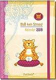 Om-Katze: Bloß kein Stress! Buchkalender 2019: Terminkalender m. Wochenkalendarium, Ferientermine & Jahresübersichten 2019/2020, illustrierte ... Gummi- u. Leseband, 10,0 x 14,5 cm