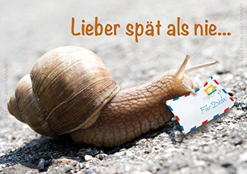 """Doppelkarte mit Kuvert Tierpostkarte Postkarte Schnecke Glückwunschkarte Geburtstagskarte """"Lieber spät als nie"""" im 3er Set"""