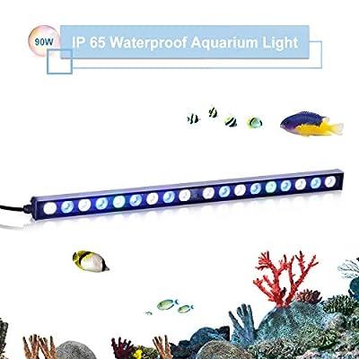 TOPLANET 90w LED pour Aquarium LED Bande Nano Fish Tank Light Bleu Lumière 55CM Imperméable IP 65 pour Corail Récif Poisson Croissance