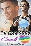 My Gay Geek Crush (Gay Best Friend Romance) (My Gay Geek Love Affair Book 1)