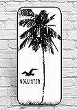 Iphone 5C Case Hollister Brand Logo Theme Print for Man, Unique Case Iphone 5C Case Cover Solid Floralmaycase
