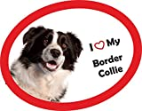Hundeaufkleber I Love my Border Collie