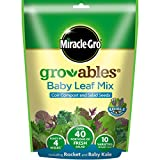 Miracle-Gro GRO-ables Baby Leaf Mix Seed Pod, Yellow, 7x7x7 cm