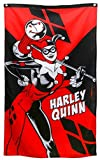 DC Comics Harley Quinn Holding Hammer Banner