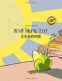 Fünf Meter Zeit/Wu mi zhang de shijian: Kinderbuch Deutsch-Chinesisch [traditionell] (bilingual/zweisprachig)