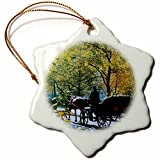 3dRose orn_16786_1 Central Park Buggy Ride Porcelain Snowflake Ornament, 3-Inch