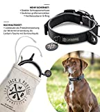 Jack & Russell Premium Hundehalsband Luna reflektierend und Neopren gepolstert Hunde Halsband div. Größen und Farben (Halsumfang S (28-35 cm), Schwarz)