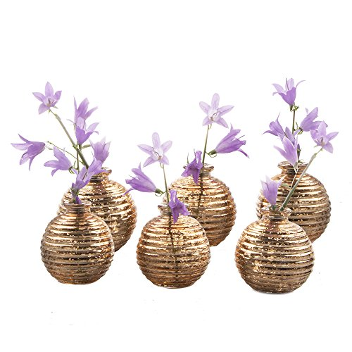 las Bud Vase Special 6Stück Pack, 6-teilig, gold (Gold Quecksilber)