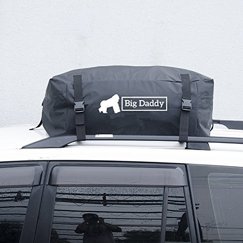 Auto portapacchi Rooftop cargo bag by Big Daddy: pratica alternativa a un tetto box- resistente telo impermeabile - tripla cucitura cinghie e una sicurezza Push Button Lock - Design universale - ideale per i viaggi in macchina - Borsa portaoggetti inclusa
