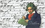 Fridolin 12236 Beethoven Planche à Découper Mélamine Multicolore 23,5 x 0,2 x 14,5 cm