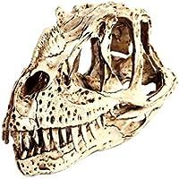 Esculturas de Cabeza Cráneo de Dinosaurio Raptor Modelo Ceratosaurio Resina Colección Decoración Barra Bar