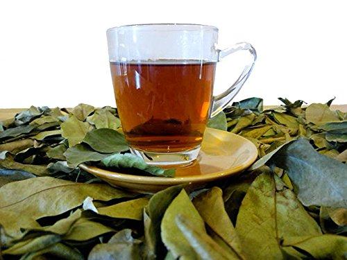 Herbal D-Tox Getrocknete Graviola-Soursop (Annona M.) ++ 240 Stück - 120 Gramm | Vakuumverpackt zur Herstellung von Dekokten | Enthält Acetogenine und Antioxidantien.