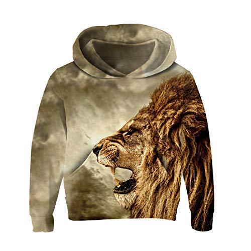RAISEVERN Galaxy Lion Print Unisex 3D Kapuzenpullover Langärmelige Pullover für Mädchen und Jungen Jugend Sweatshirt Outdoor-Mantel große 11-15 t - Jugend Hoody Sweatshirt