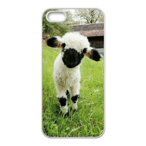 LP-LG Phone Case Of Sheep For iPhone 5,5S [Pattern-6] Pattern-6