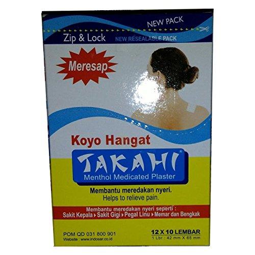 takahi-koyo-hangat-calido-de-champu-de-mentol-yeso
