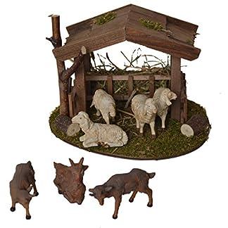 Alfred Kolbe Krippen Am 31 – Accesorios para belén (Refugio de 18 x 14,5 x 13 cm con 4 ovejas Blancas y 3 Cabras, para Figuras de 10-12 cm)