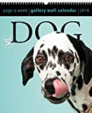 #6: 2019 Dog Gallery Wall Page-A-Week Gallery Wall Calendar