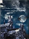Leinwandbild 30 x 40 cm: Alternative Harry Potter Retro Film Art von 2ToastDesign - fertiges Wandbild, Bild auf Keilrahmen, Fertigbild auf Echter Leinwand, Leinwanddruck