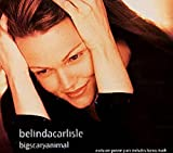 Bigscaryanimal - Poster Pack by Belinda Carlisle (0100-01-01)