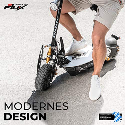 E-Scooter Roller Original E-Flux Freeride 1000 Watt 48 V mit Licht und Freilauf Elektroroller E-Roller in vielen Farben (Limited Gold) - 9