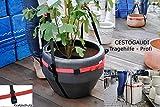 K belpflanzen transportieren tragegurt oder k belroller - Steinfiguren garten gebraucht ...