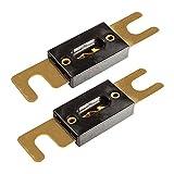 tomzz Audio 5800-022 ANL Sicherung 100A, vergoldete Kontakte, 2 Stück