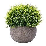 Houda Plante Artificielle Herbe Verte des Plantes avec Pots pour Salle de Bain/Home Decor, Petite Simili Verdure Artificielle pour Maison Décorations