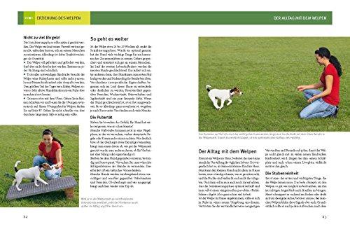 Hundeschule für jeden Tag: Erziehung die dem Hund Spaß macht - 6