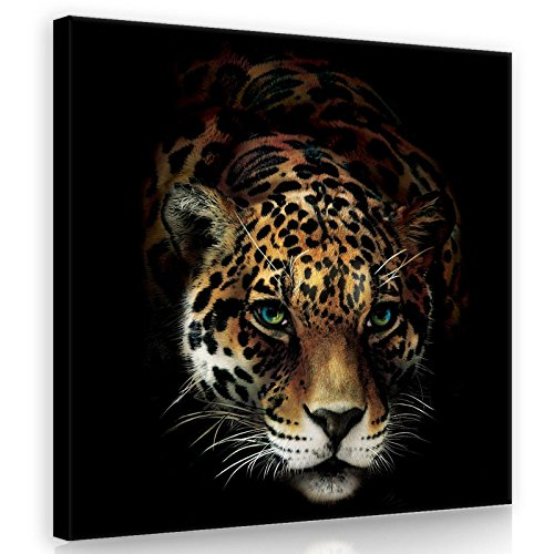 BILD CANVASBILD Wandbild Leinwandbild Kunstdruck Canvas | Jaguar | O2 (80cm. x 80cm.) | Canvas Picture Print PP10148O2-MS | Tier Tieren Katze Tiger Jaguar Schwarz Gepard Nat ()