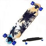ZEARO Komplett Langbrett Longboard Skateboard Tanzen Straße Brett hohe Geschwindigkeit mit 4 PU-Räder