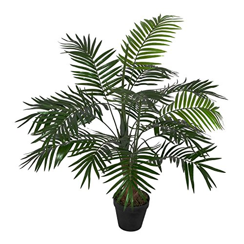 Homescapes Green 3 ft Mini Palm ...