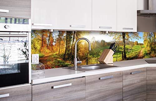 DIMEX LINE Küchenrückwand Folie selbstklebend Wiese 260 x 60 cm | Klebefolie - Dekofolie - Spritzschutz für Küche | Premium QUALITÄT