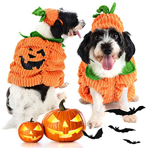 outgeek Hundekleiderkürbis-Entwurfs-kreatives lustiges Haustier Hund Halloween-Kostüm mit Kürbis-Hut (Für Halloween Kostüm Kreatives)