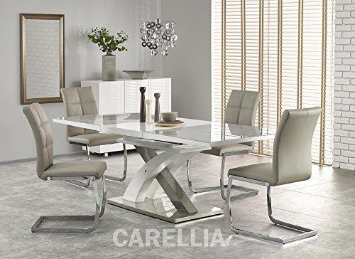 CARELLIA Tisch Hat Essen Design Rechteckig ausziehbar 160÷ 220/90/75cm–Grau