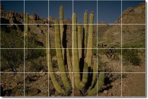 DESIERTOS FOTO BAñO AZULEJO MURAL 25  32X 48CM CON (24) 8X 8AZULEJOS DE CERAMICA