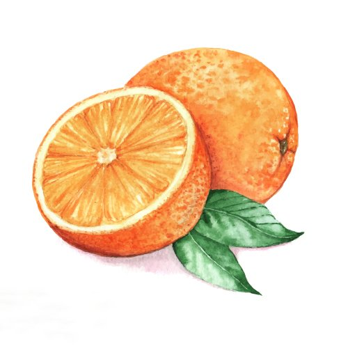 (paquete de 6) Yankee vela naranja Splash aromaterapia fragante diseñador aroma de lujo medio jar vela, 411g