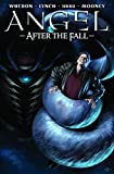 Angel: After The Fall Volume 4 HC: After the Fall v. 4 (Angel (IDW Hardcover))
