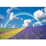 Vlies Fototapete PREMIUM PLUS Wand Foto Tapete Wand Bild Vliestapete - Regenbogen Blumen - no. 273, Größe: 200 x 140 cm Vlies