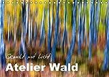 Atelier Wald - gemalt mit Licht (Tischkalender 2017 DIN A5 quer): Naturfotografie der Spitzenklasse - ohne Computereffekte! (Monatskalender, 14 Seiten ) (CALVENDO Natur)